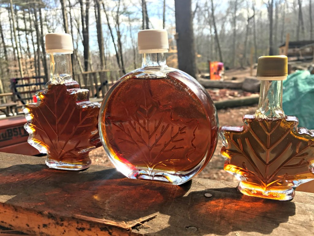 Maple syrup bottles in a forrest