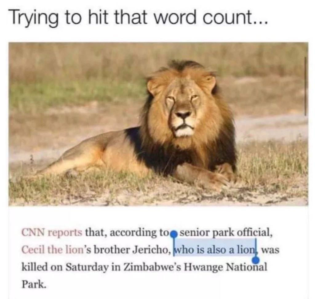 A news article about a lion