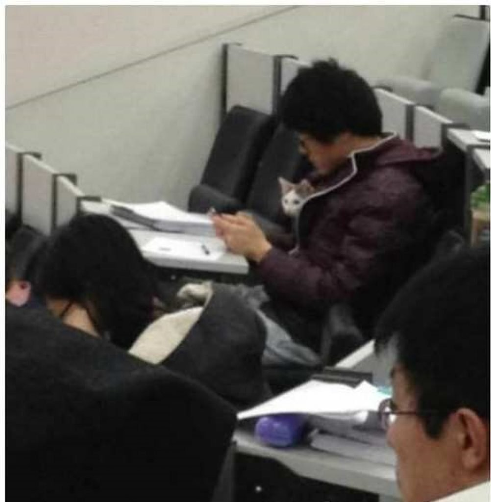 A student snuck his cat in with him to lecture