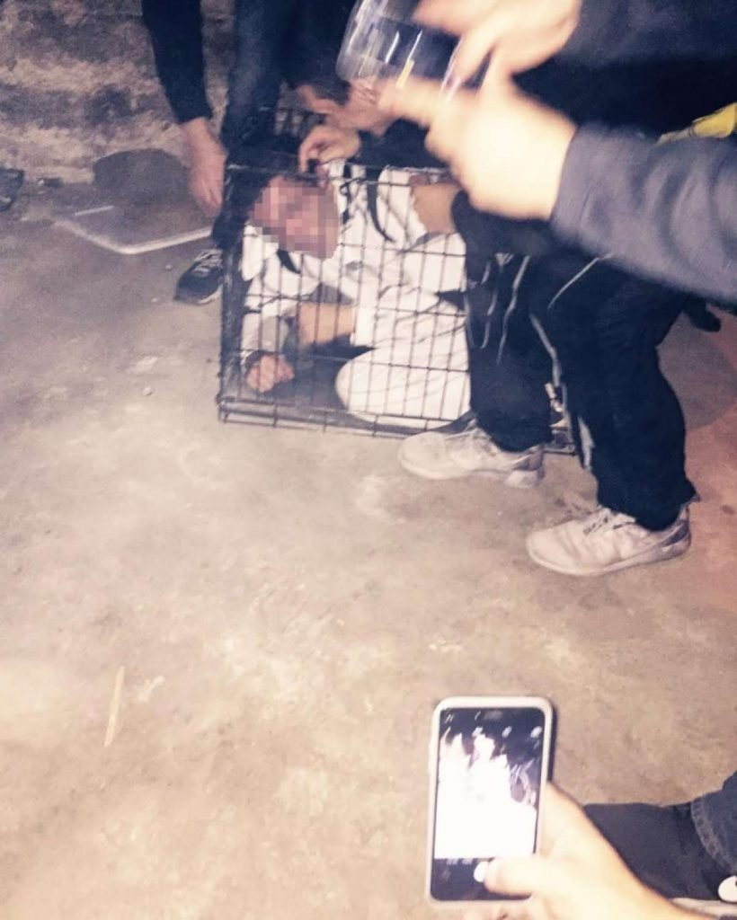 Frat pledge in a cage